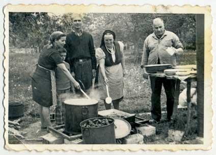 Pflanzen-kochen-aufguss