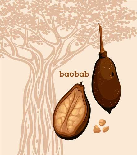 Baobab gemahlen