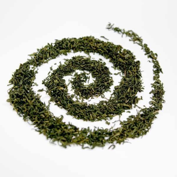 Grüner Tee Vanille Premium